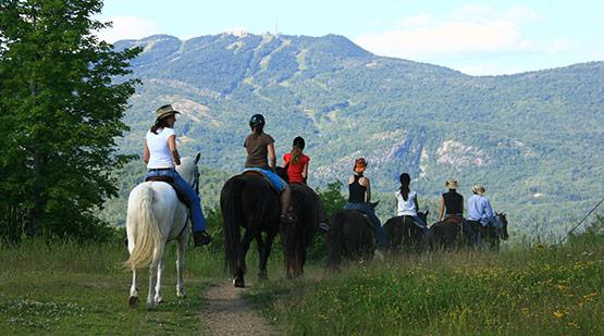 img-equitation